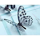 Snowfoller 36 Pcs 3D Black & White Butterfly Wall Sticker Cute Children's Room Art Wall Decal for Home Living Room Bedroom Decor