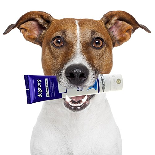 (Beef-flavored Dog Toothpaste - Turn tooth brushing into a Joyful experience - Safe to Swallow - Fights bad breath, Plaque & Tartar - Prevent Gum Disease - Free from toxic Foaming agent)