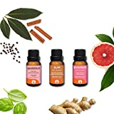 Hungry? - GuruNanda Aromatherapy Essential Oils Set 3pc Kit - Reduce Fatigue - Suppress Cravings - Manage Appetite - Energize - 100% Pure - Undiluted - Therapeutic Grade Essential Oils - 15ml