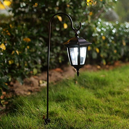 Hanging Landscape Lights in US - 7