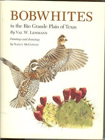 Bobwhites in the Rio Grande Plain of Texas
