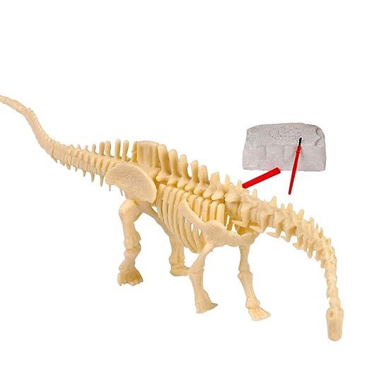 WANNA.ME Mega Fossil Dig Kit Dinosaur Bones Regalo para ...