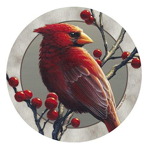 - Thirstystone Stoneware Coaster Set, Cardinal