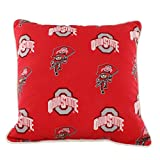 Buckeye Outdoors College Covers OHIODP Ohio State Buckeyes Outdoor Decorative Pillow, 16