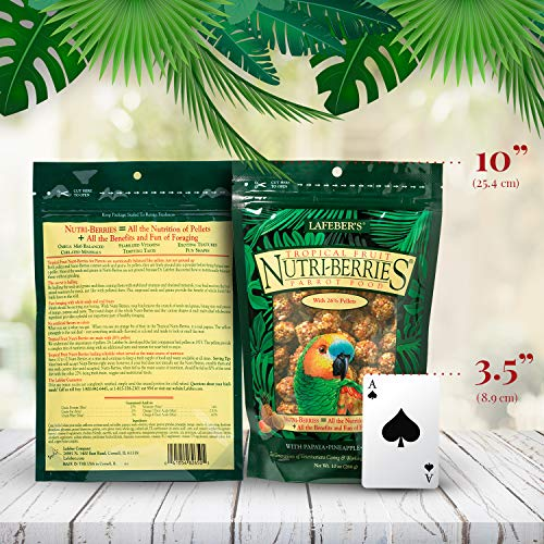 LAFEBER'S Tropical Fruit Nutri-Berries Pet Bird Food, Made with Non-GMO and Human-Grade Ingredients (10 oz - Parrot)