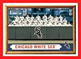 2006 Topps Heritage #329 Chicago White Sox TEAM PHOTO BASEBALL CARD