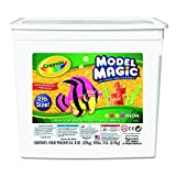 : Crayola 232413 Model Magic Modeling Compound, 8 oz each/Neon, 2 lbs.