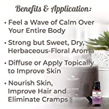 Plant Therapy Organic Lavender Essential Oil