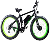 Big Cat Electric Bikes Fat Cat All Terrain Bicycle, 26-Inch/One Size Review