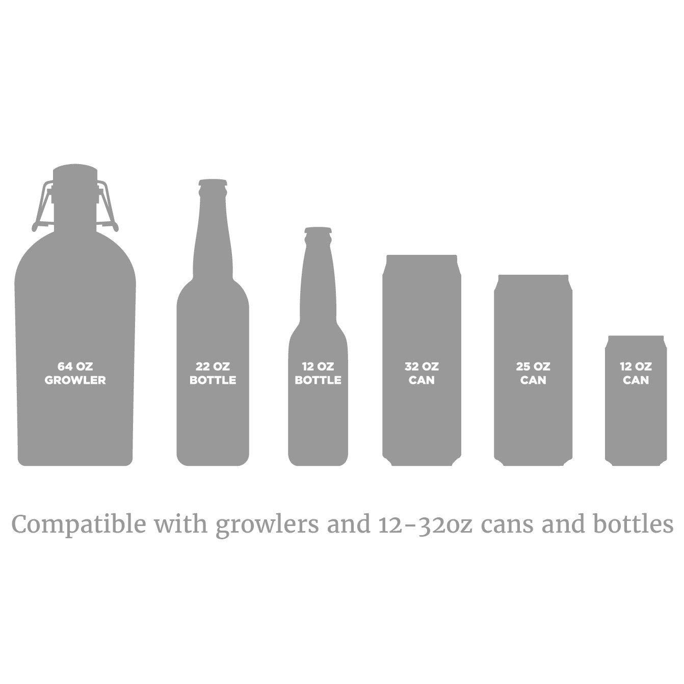 Fizzics Original. Portable Beer System with Fizzics Micro-foam Technology for a Bottle to Draft Experience (for 64 oz. growlers, cans and bottles).