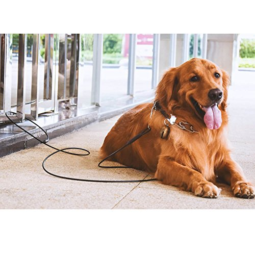 WATFOON Heavy Duty Dog Tie Out Cable For Super Beast Dog Up To 250lbs, SUS304 Stainless Steel Swivel Clip Tangle Free,Perfect Choice For Outdoor,Yard,Training & Camping (10 FT, Black) by WATFOON (Image #7)