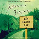 Big Stone Gap: A Novel Hörbuch von Adriana Trigiani Gesprochen von: Adriana Trigiani