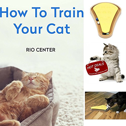 & EBOOK HOW TO TRAIN YOUR CAT BY RIO CENTER,Toys For Kittens,Steep Sweep Cat Toy,Best Cat Toys-Satisfies Their Natural Hunting Instinct. (Sweep Train Natural)