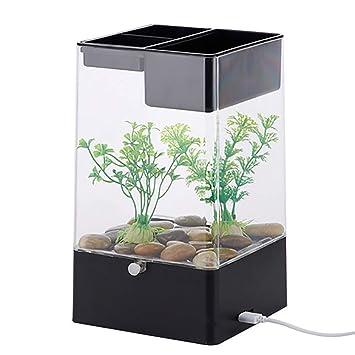 Mini Acrílico Goldfish Bowl Office Transparente Noche Creativa Luces Fácil De Limpiar Acuario Decoración De Escritorio,Black: Amazon.es: Jardín