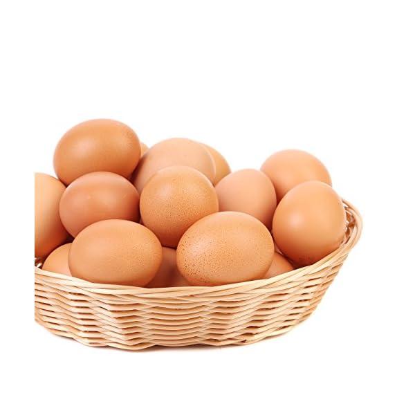 Augason Farms Dried Whole Egg