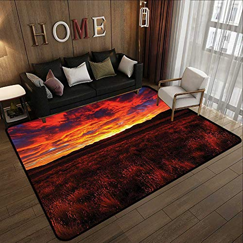 Throw Rugs,Apartment Decor Collection,Lonely Country Road Catching Last Lights of The Day Vibrant Colors Evening View,Orange Yellow 47