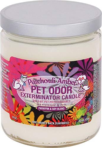 Specialty Pet Products Amber Patchouli Pet Odor Exterminator 13 Ounce Jar Candle (Amber Patchouli, 1) (Best Odor Eliminating Candles)