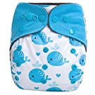 "HappyEndings Charcoal Bamboo AI2TM All-In-Two Cloth Diaper / Snap-in Insert ""Whale of a Tale"""