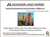 Cheap WonderLand Herbs Sinkiang Wild Desertliving Cistanche tubulosa Herb 10:1 Extract 100 Grams Tonic