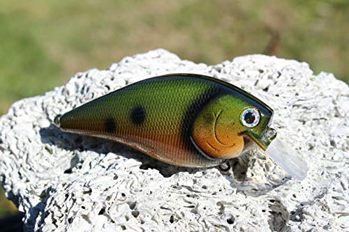 Custom Painted 2.5 Square Bill, crankbait, Lures, Fishing, bass, Tackle