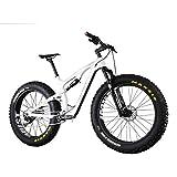 IMUST Malamute Carbon Fatbike Full Suspension Rockshox Bluto Fork Shimano M8000 Groupset 18 Inch