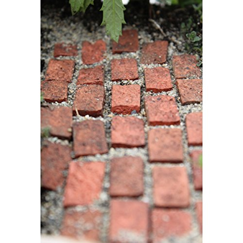 Miniature Fairy Garden Mini Bricks - Set of 20