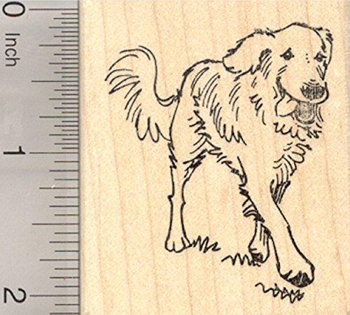 Golden Retriever Rubber Stamp, Dog