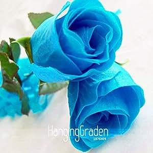 Sale! 50 Pieces / Bag, New Rosen Samen Blue Rose Seeds Gothic Gardenin,#MD7QBL