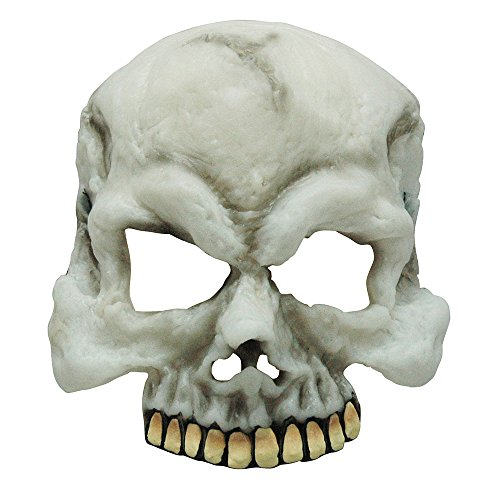 Bristol Novelty BM385 Glow in The Dark Skull Half Mask, One Size