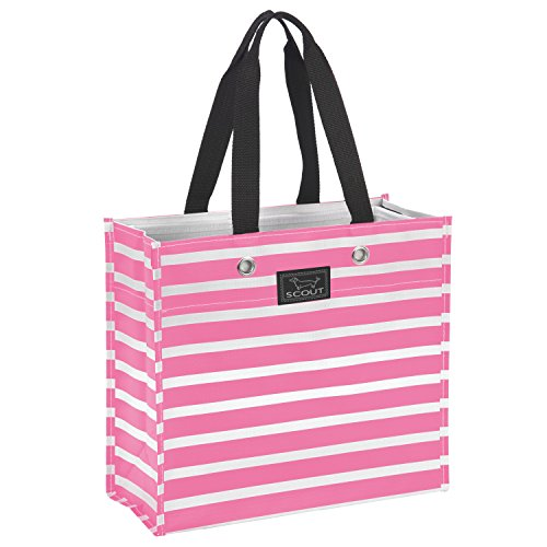 - SCOUT Large Package Reusable Gift Bag, Folds Flat, Water Resistant (Panama Pink)