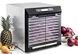 Excalibur EXC10EL 10-Tray Electric Food Dehydrator with Digital Controller Features 99-Hour Timer with Adjustable Time and Temperature Auto Shut Off Made in USA, 10-Tray, Silver