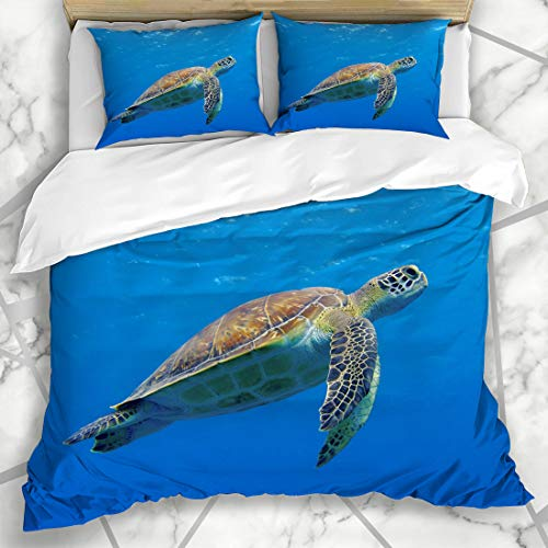 Ahawoso Duvet Cover Sets Queen/Full 90x90 Aquarium Green Diving Happy Cute Sea Turtle Swimming Freely Nature Blue Florida Underwater Scuba Microfiber Bedding with 2 Pillow Shams
