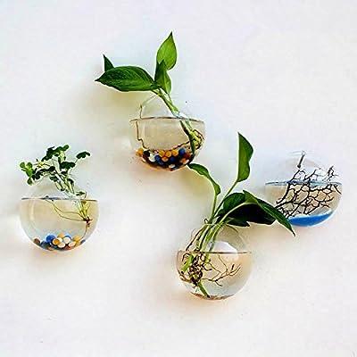 "Hanging Plant Flower Glass Ball Vase Terrarium Wall Fish Tank Aquarium Container ""12cm"" Set44 from Particles"