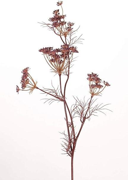 Artplants De Zanahoria Silvestre Artificial Dorah 45 Flores Rojo Lila 80cm Flor De Zanahoria Ramillete De Flores Amazon Es Hogar Como cultivar zanahorias en el huerto y en el jardín. artplants de zanahoria silvestre
