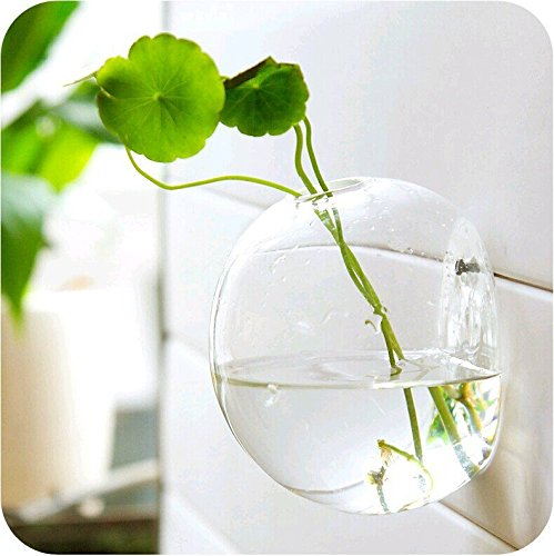 UPC 602716588164, Mkono Wall Hanging Plant Terrarium Glass Planter, Bubble L