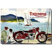 Old Style Triumph Thunderbird Sea Scene Advertisement Quality Metal Sign (285mm x 400mm x 1mm)
