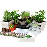 Indoor Garden Seed Starter Kits - Grow Culinary, Medicinal & Tea Herbs - Start for Outdoor Growing or Indoor Container Gardening: Basil, Dill, Thyme, Oregano, Chamomile, More