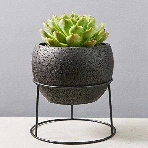 Nattol Succulent Planter, 5.6 inch Black Round Succulents Pots | Cement Plant Pot with Metal Stand