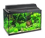 HAQOS Rectangular Glass Aquarium X-620
