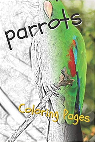 Free Printable Parrot Coloring Pages For Kids | 499x333
