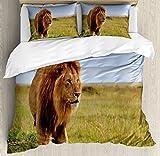 Lion Queen Size Duvet Cover Set by Lunarable, Photograph Lion on Masai Mara Kenya Majestic Beast of Africa King Hunter, Decorative 3 Piece Bedding Set with 2 Pillow Shams, Orange Green Baby Blue