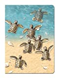 Tree-Free Greetings Journal, 160 Ruled Pages, Recycled, 5.5 x 7.5 Inches, Baby Turtles, Multi Color (72088)