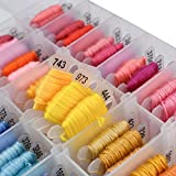 DMC 100 Multicolor Embroidery Thread with Organizer Storage Box Friendship Bracelets String Embroidery Floss Bracelet Kits Floss BOBBINS Cross Stitch Tool KIT with Beads and Ribbons Total 374 PCS