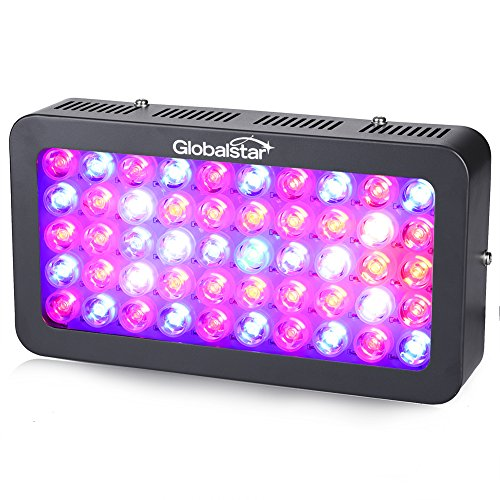 Global Star® 300W LED Grow Light Full Spectrum for Indoor Plants Greenhouse Growing Lamp Fixtures 50x6W and 2 Switches