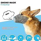 WensLTD Hot ! 3Pcs Dog Soft Cotton Mouth Mask Pet Respiratory PM2.5 Filter Anti Dust Masks (S, Gray)