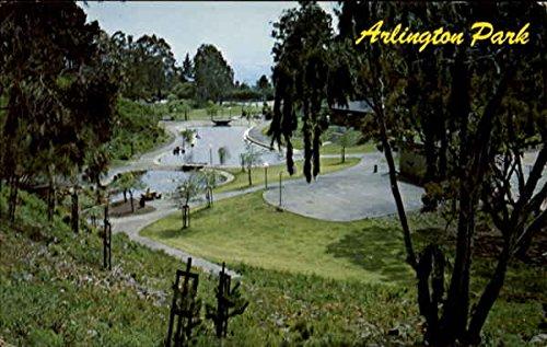 Amazon.com: Arlington Park El Cerrito, California Original Vintage Postcard: Entertainment Collectibles