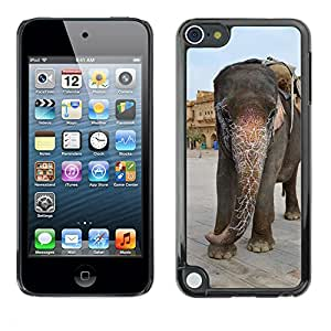 Etui Housse Coque de Protection Cover Rigide pour // M00133904 India Palace Getting Married // Apple ipod Touch 5 5G 5th