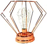 Essential Décor & Beyond EN12284 Led Geometric Copper Decor Bulb
