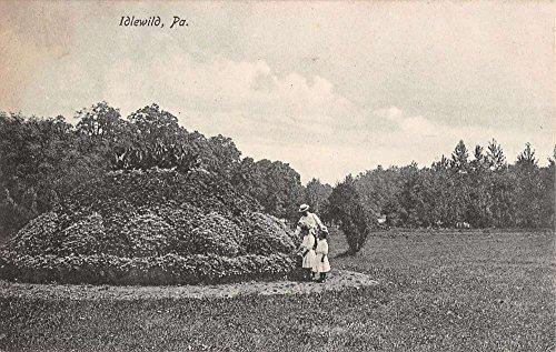 (Idlewild Pennsylvania Garden Park Scene Antique Postcard K30898)