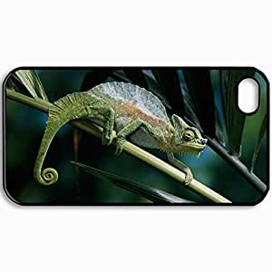 Personalized Protective Hardshell Back Hardcover For iPhone 4/4S, Chameleon Color Branch Climbing Design In Black Case Color